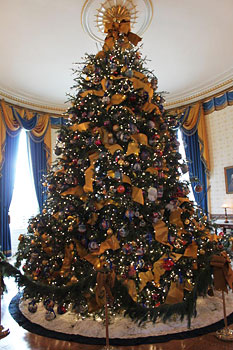 Dan and Bryan Christmas Trees (formerly Sundback's) in Washington, Maryland and West Virginia, selected to provide the White House Christmas Tree in 2009.